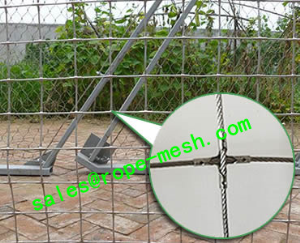 Stainless steel square rope mesh