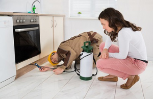 Residential Pest Control Services in India