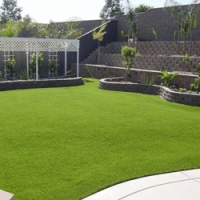 Turf and Garden Care