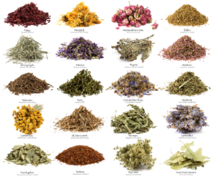 All Kind of Natural Herb and Powder