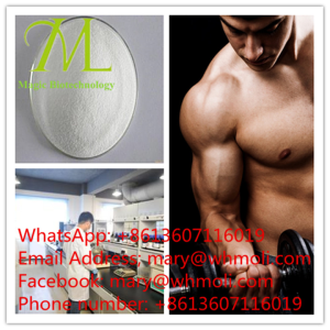 YK-11 sarms mary@whmoli.com body building safe and healthy hormone manufacture