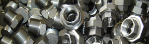 Threaded Forged Fittings Manufacturer