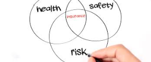 Insurance for Health, Wealth and Risk
