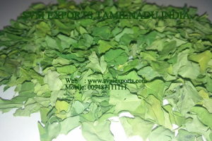 Indian Moringa Dry Leaves Exporters India