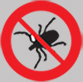 Best Bedbugs Pest Control Service in Pune, New Delhi