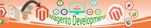 magento development quality services by us