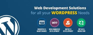 WordPress: The Best Choice for Website Development – silicon valley