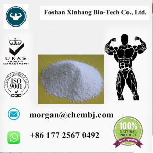 Pramoxine high quality ISO SGS supplier China