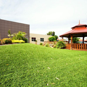 synthetic lawn Perth