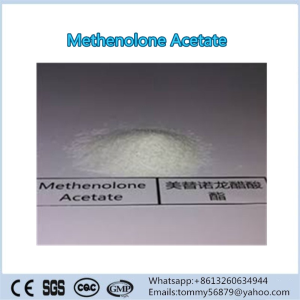 Methenolone Acetate steroid powder