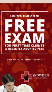 Free Pet Exams at Snowden Animal Hospital Cloverdale Surrey