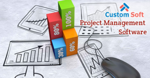 Web Based Project Management Software by CustomSoft