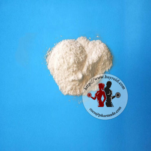 Testosterone Base Steroid Powder Online Buyroid.com