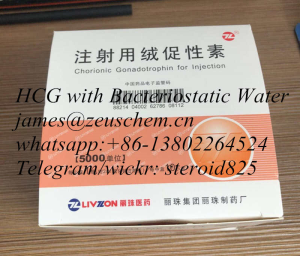 the cheapest HCG human Chorionic gonadotrophin 5000iu vial guanantee delivery