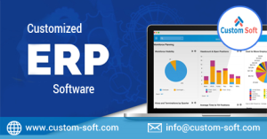 Customized ERP Software developed in CustomSoft India
