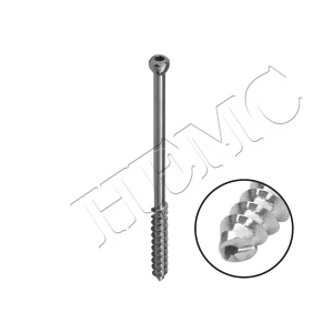 Cannulated Screw