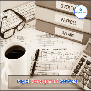 Customized Payroll Management by CustomSoft