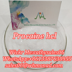 Monad Supply Anti-Inflammatory Anesthetic Anodyne Procaine Hcl Cas 51-05-8
