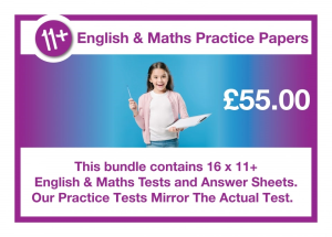 11 plus practice tests from  schooltests.org