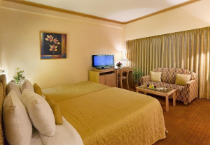Executive Twin Room,Executive Deluxe Room