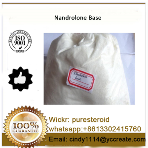 Raw Steroid Powder Nandrolone Base With Safe Shipping