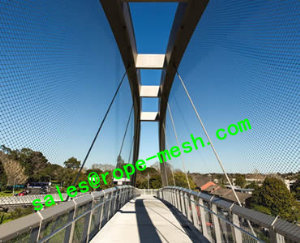 Suspension Bridge Railing Mesh