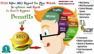 Seo services in Jaipur