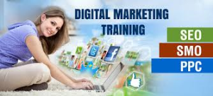 Best & Advanced Digital Marketing Training Institute in Delhi, East Delhi, Laxmi Nagar