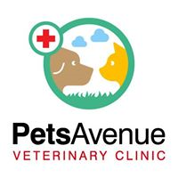 24-Hour Vets in Singapore for Your Furry Pets-Pets