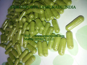 Moringa Capsules Suppliers India