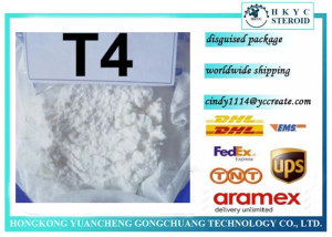 Steroid powder T4 L-Thyroxine Sodium salt for weight loss whatsapp +8613302415760