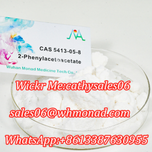 New 16648 BMK 2-Phenylacetoacetate CAS 5413-05-8