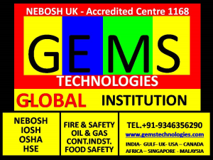 Nebsoh Health Safety Courses Training Institutes in India Hyderabad Mumbai Delhi Kerala,Kochi
