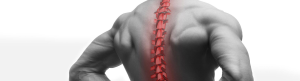 Back pain chiropractor Adelaide