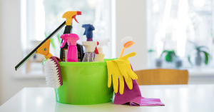 PROFESSIONAL HOUSE CLEANING SERVICES & JANITORIAL
