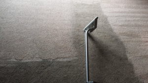 carpet cleaning in acampo