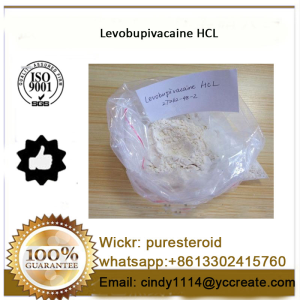 Effective Anti - Pain Local Anesthetic Drug Levobupivacaine Hydrochloride