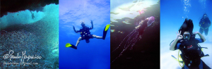 Divemaster Training Program