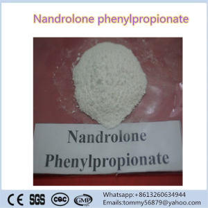 Nandrolone Phenylpropionate steroid powder for muscle building