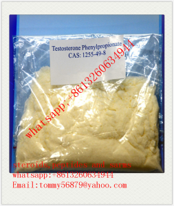 Testosterone Phenylpropionate raw steroids powder supply whatsapp:+8613260634944