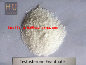 USA/UK domestic Hupharma Testosterone Enanthate injectable steroids Powder