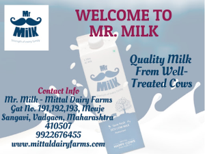 Best Milk Dairy Farms in Pune