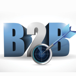 B2B Services by Svasam Soft