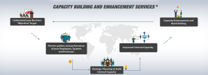 Capacity Building and Enhancement Services