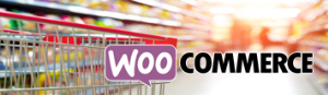 WooCommerce Product Upload Services