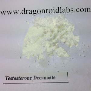 Testosterone Decanoate Steroids Direct Supply www.dragonroidlabs.com