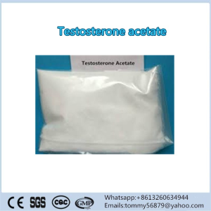 Testosterone Acetate steroid powder for weight loss
