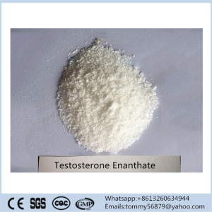 Testosterone Enanthate steroid powder for muscle building