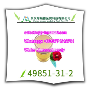 China supplier CAS 49851-31-2,49851 31 2,2-Bromovalerophenone