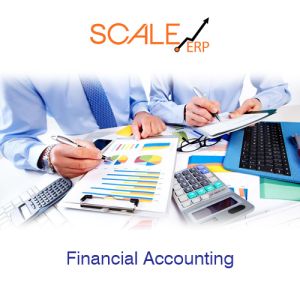 Financial Accounting ERP Software